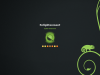 opensuse_13-1_splash